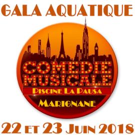 Gala de fin d'année 2018 Show Aquatique «Comédies Musicales»